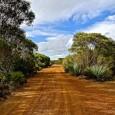 Nos premiers pas en Australie sont à Adélaide (article à suivre). Nous avions 3 jours devant nous avant de récupérer le camper-van et nous voulions absolument mettre les […]